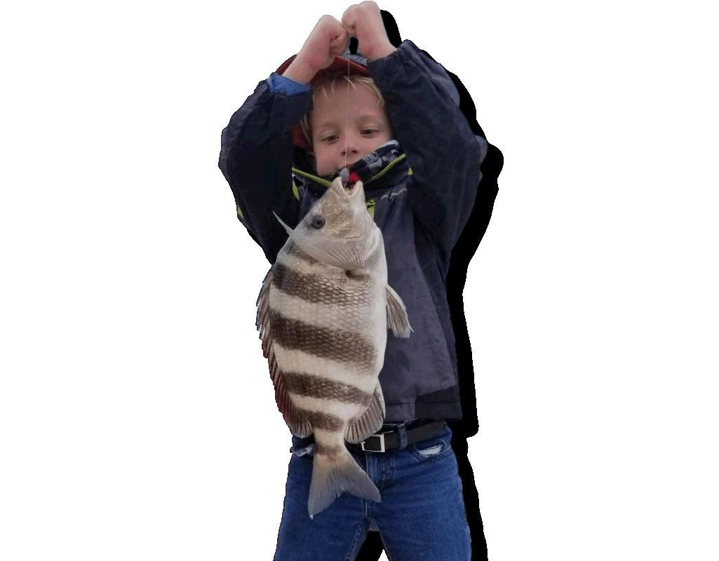 Pensacola Fishing Updates